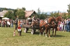 smrhovska-brazda-2007-10